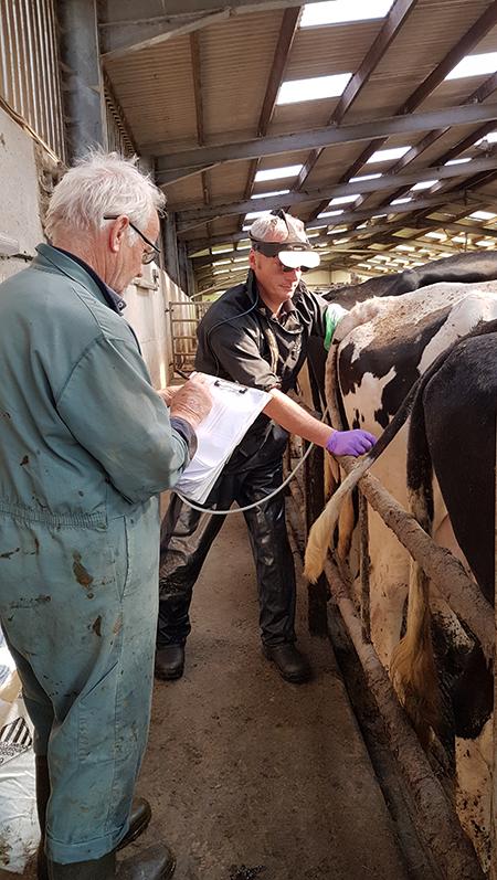 Farm Veterinary Services