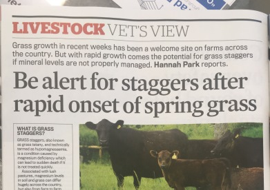 Grass Staggers