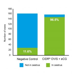 CIDR OVIS Fertility Control for Sheep