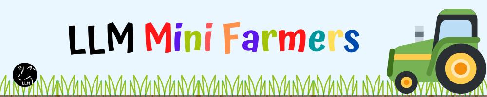 LLM Mini Farmers